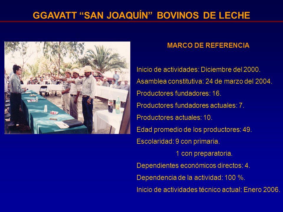 GGAVATT SAN JOAQUÍN BOVINOS DE LECHE MARCO DE REFERENCIA Inicio de actividades: Diciembre del 2000. Asamblea constitutiva: 24 de marzo del 2004. Produ