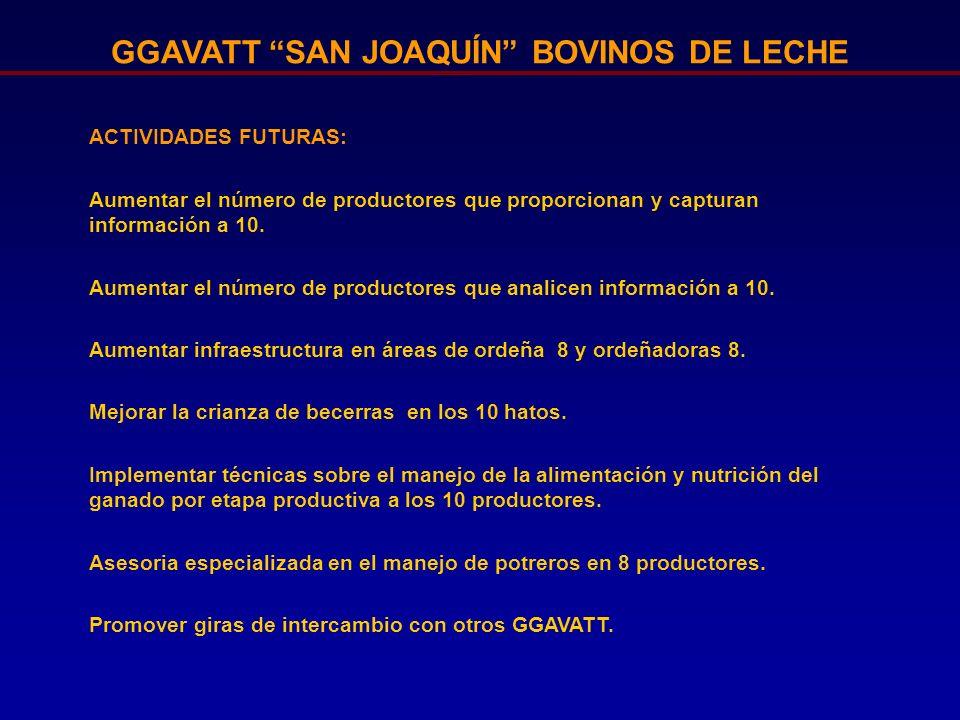 GGAVATT SAN JOAQUÍN BOVINOS DE LECHE ACTIVIDADES FUTURAS: Aumentar el número de productores que proporcionan y capturan información a 10. Aumentar el