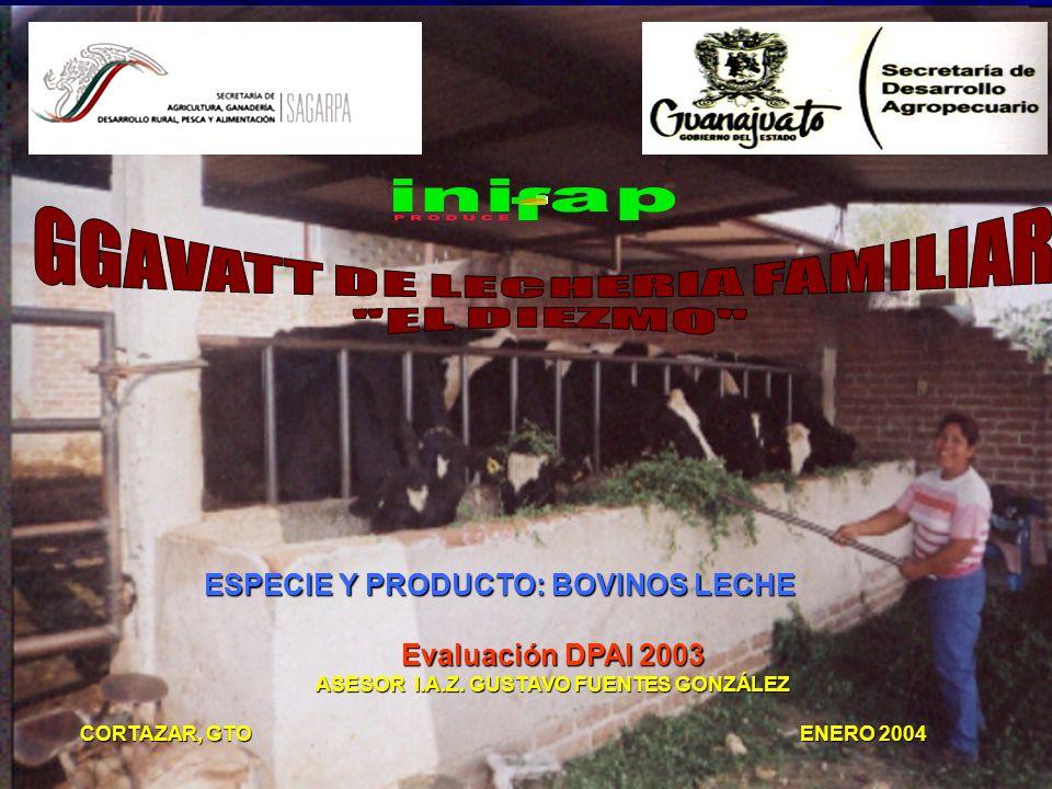 ESPECIE Y PRODUCTO: BOVINOS LECHE Evaluación DPAI 2003 ASESOR I.A.Z.