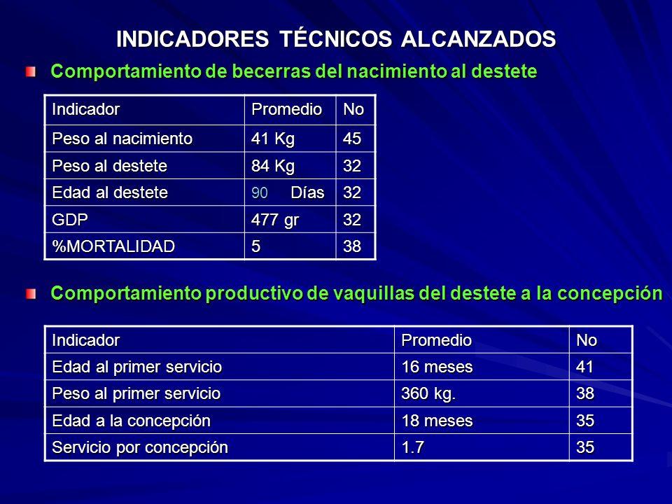 DIAGNOSTICO DE MASTITIS RESULTADO DE MUESTREOS DE PRUEBA DE CALIFORNIA MAYOJUNIOAGOSTOOCTUBRE TOTAL VACAS 58708542 VACAS SUBCL. 610138 CUARTOS INF. 81