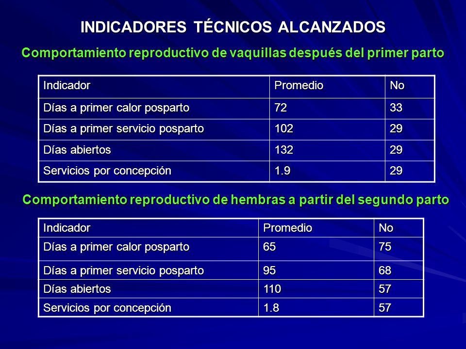 INDICADORES TÉCNICOS ALCANZADOS Comportamiento de becerras del nacimiento al destete IndicadorPromedioNo Peso al nacimiento 41 Kg 45 Peso al destete 8