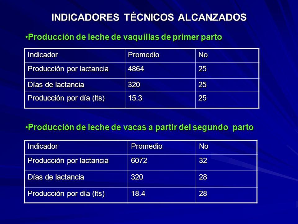 INDICADORES TÉCNICOS ALCANZADOS IndicadorPromedioNo Días a primer calor posparto 7233 Días a primer servicio posparto 10229 Días abiertos 13229 Servic