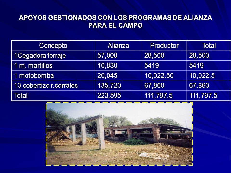 ANALISIS ECONOMICO Estructura de ingresos