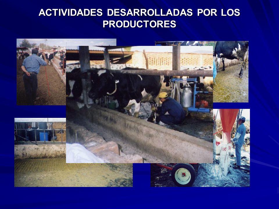 ACTIVIDADES DESARROLLADAS CON PRODUCTORES Asistencia a platicas técnicas 1.- Estrategias a manejo y alimentación en ganado lechero 2.- Cultivos de alt
