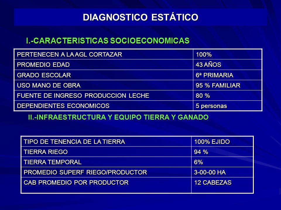 DIAGNOSTICO ESTÁTICO PERTENECEN A LA AGL CORTAZAR 100% PROMEDIO EDAD 43 AÑOS GRADO ESCOLAR 6ª PRIMARIA USO MANO DE OBRA 95 % FAMILIAR FUENTE DE INGRESO PRODUCCION LECHE 80 % DEPENDIENTES ECONOMICOS 5 personas I.-CARACTERISTICAS SOCIOECONOMICAS II.-INFRAESTRUCTURA Y EQUIPO TIERRA Y GANADO TIPO DE TENENCIA DE LA TIERRA 100% EJIDO TIERRA RIEGO 94 % TIERRA TEMPORAL 6% PROMEDIO SUPERF RIEGO/PRODUCTOR 3-00-00 HA CAB PROMEDIO POR PRODUCTOR 12 CABEZAS