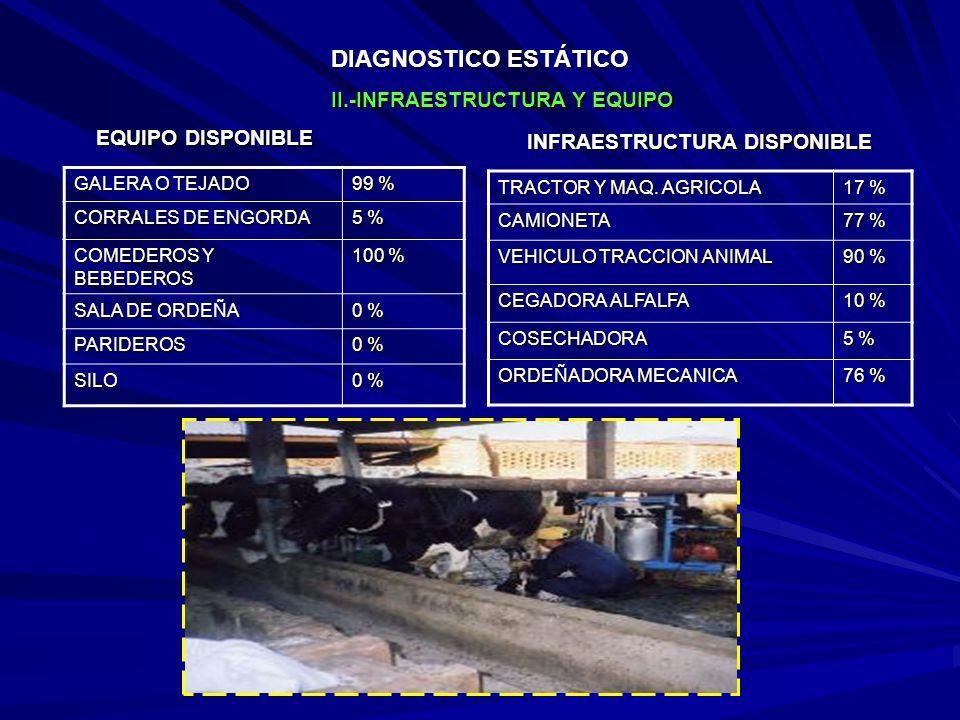 DIAGNOSTICO ESTÁTICO GALERA O TEJADO 99 % CORRALES DE ENGORDA 5 % COMEDEROS Y BEBEDEROS 100 % SALA DE ORDEÑA 0 % PARIDEROS SILO TRACTOR Y MAQ.