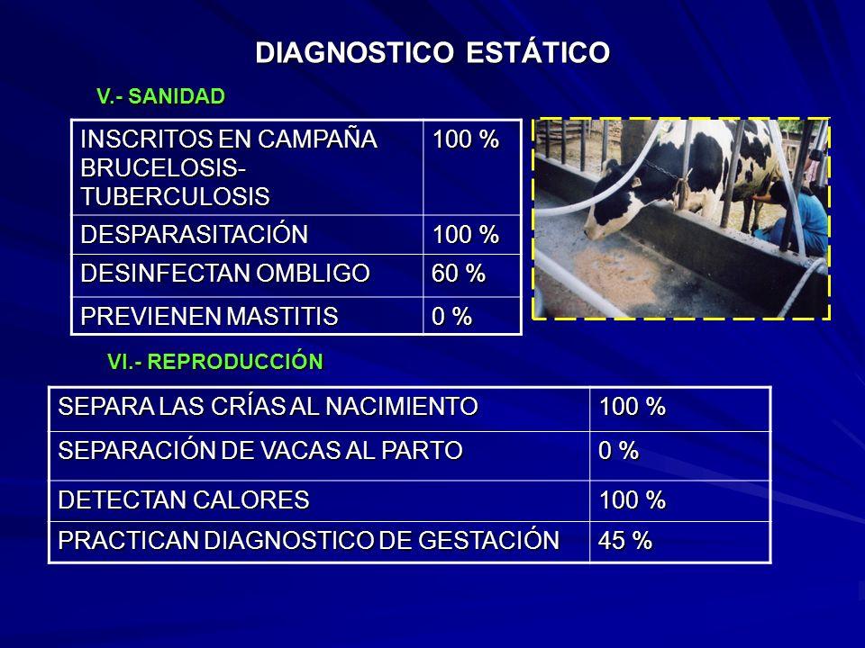 DIAGNOSTICO ESTÁTICO IDENTIFICACION DE GANADO 10 % LOTIFICACION DE GANADO 0 % DESCORNE Y DESPEZUÑE 100 % REGISTROS PRODUCTIVOS 18 % REGISTROS ECONOMIC