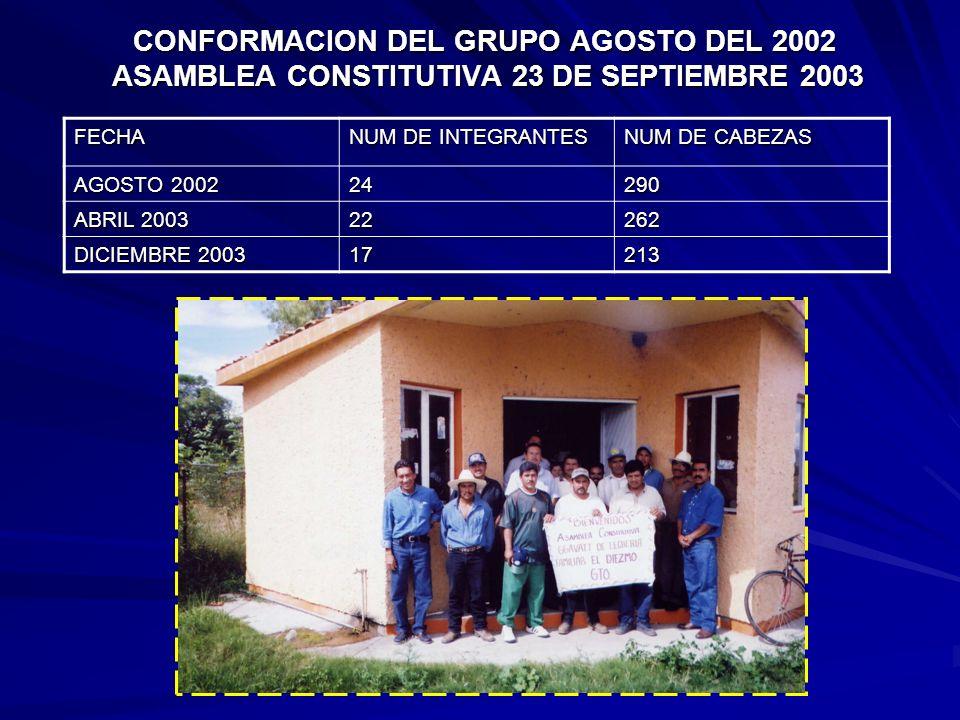DIAGNOSTICO ESTÁTICO CRITERIO DE SELECCIÓN ANTECEDENTES PRODUCTIVOS DE LA HEMBRA 70 % SELECCIÓN POR FENOTIPO 40 % UTILIZAN INSEMINACIÓN ARTIFICIAL 60
