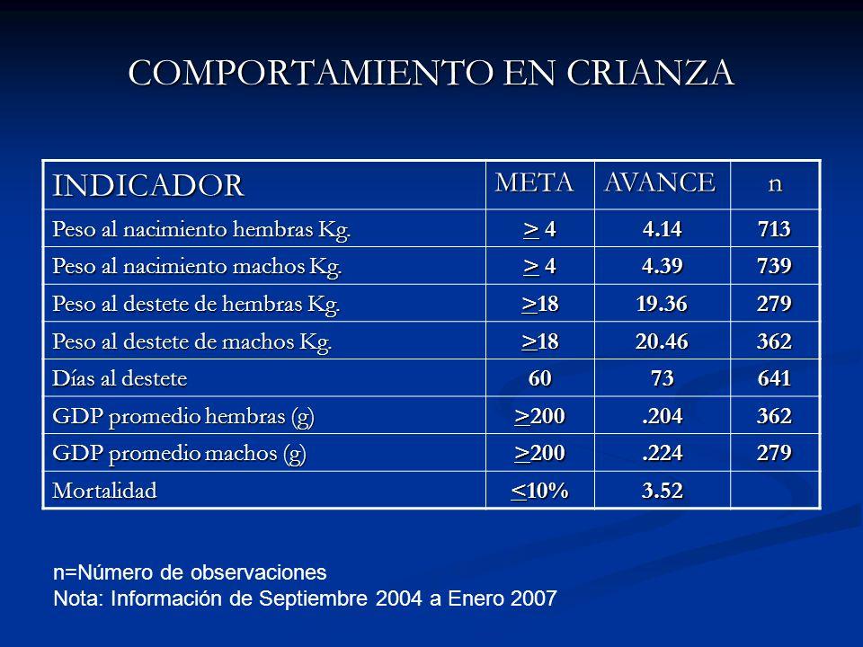 COMPORTAMIENTO EN CRIANZA INDICADORMETAAVANCEn Peso al nacimiento hembras Kg. > 4> 4> 4> 44.14713 Peso al nacimiento machos Kg. > 4> 4> 4> 44.39739 Pe