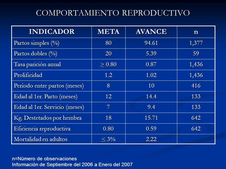 COMPORTAMIENTO REPRODUCTIVO INDICADORMETAAVANCEn Partos simples (%) 8094.611,377 Partos dobles (%) 205.3959 Tasa parición anual > 0.80 0.871,436 Proli