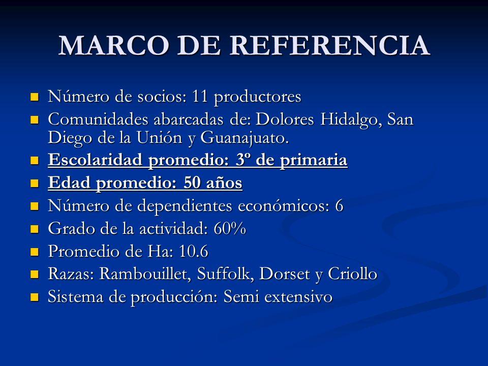 MARCO DE REFERENCIA Número de socios: 11 productores Número de socios: 11 productores Comunidades abarcadas de: Dolores Hidalgo, San Diego de la Unión