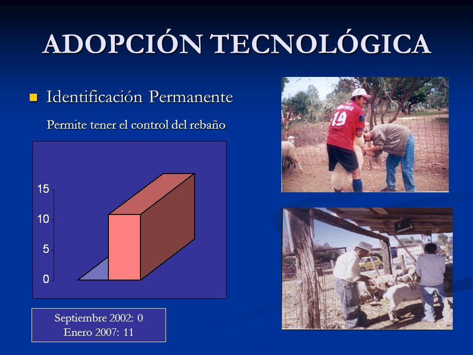 ADOPCIÓN TECNOLÓGICA Identificación Permanente Identificación Permanente Permite tener el control del rebaño Permite tener el control del rebaño Septi