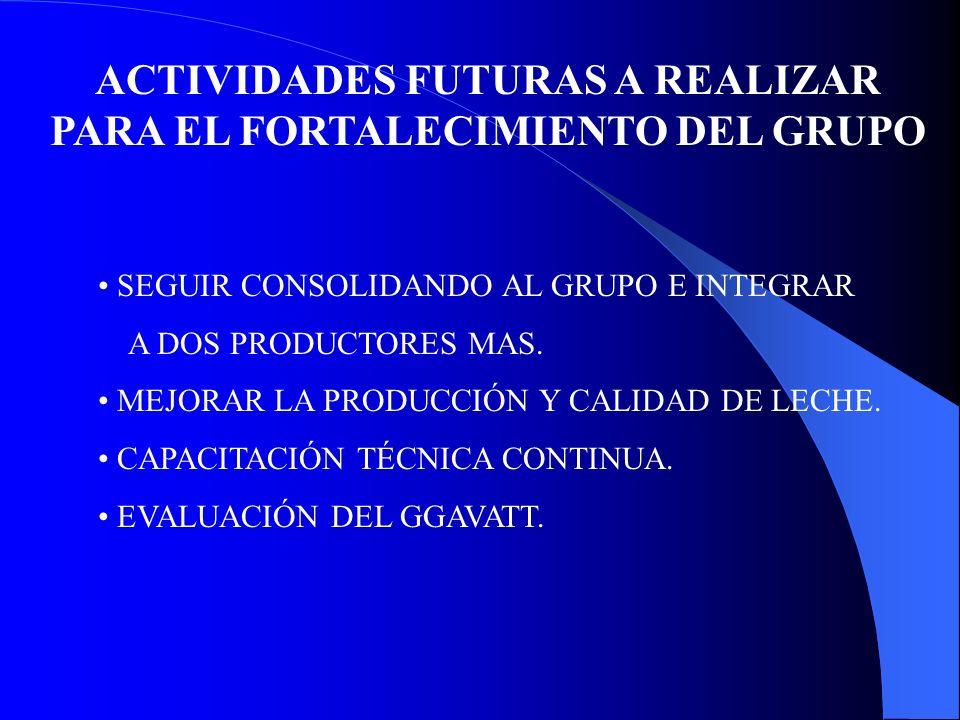 ACTIVIDADES FUTURAS A REALIZAR PARA EL FORTALECIMIENTO DEL GRUPO SEGUIR CONSOLIDANDO AL GRUPO E INTEGRAR A DOS PRODUCTORES MAS. MEJORAR LA PRODUCCIÓN