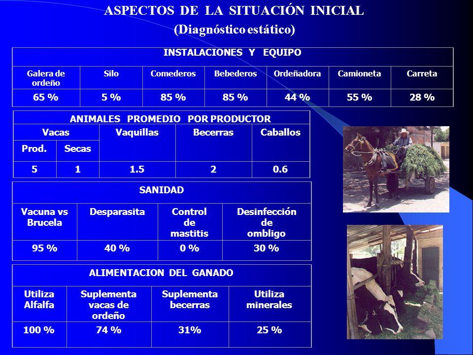 MANEJO ZOOTECNICO IdentificaRealiza descorne Lotifica vacas Registros económicos y productivos 40 %100 %30 % 0 % REPRODUCION Y GENETICA Separa al parto Vacas paridas por año Uso de la I.A.