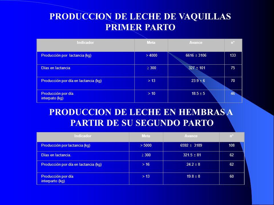 IndicadorMetaAvancen*n* Producción por lactancia (kg) > 4000 6616 3106 133 Días en lactancia 300 327 101 75 Producción por día en lactancia (kg) > 13