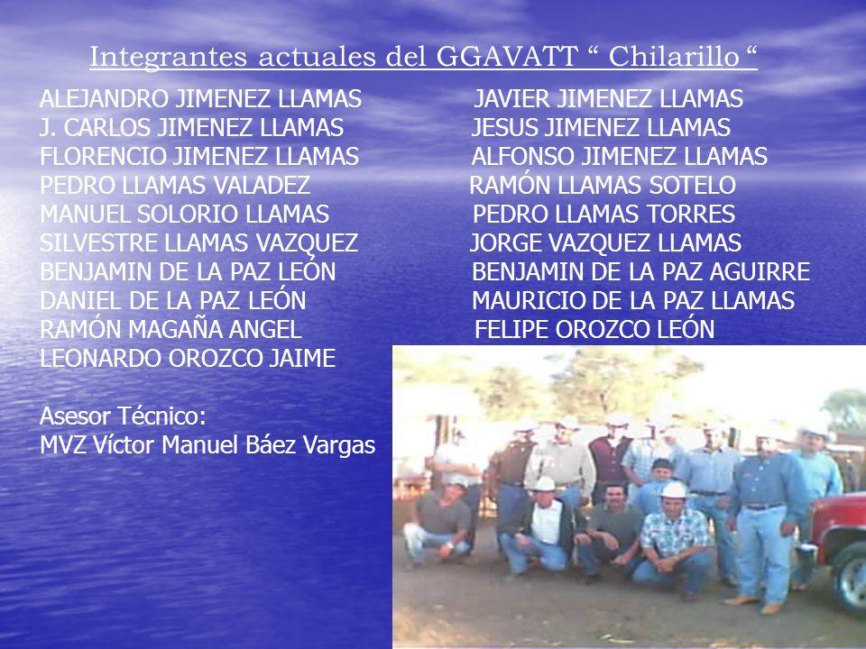 Integrantes actuales del GGAVATT Chilarillo ALEJANDRO JIMENEZ LLAMAS JAVIER JIMENEZ LLAMAS J. CARLOS JIMENEZ LLAMAS JESUS JIMENEZ LLAMAS FLORENCIO JIM