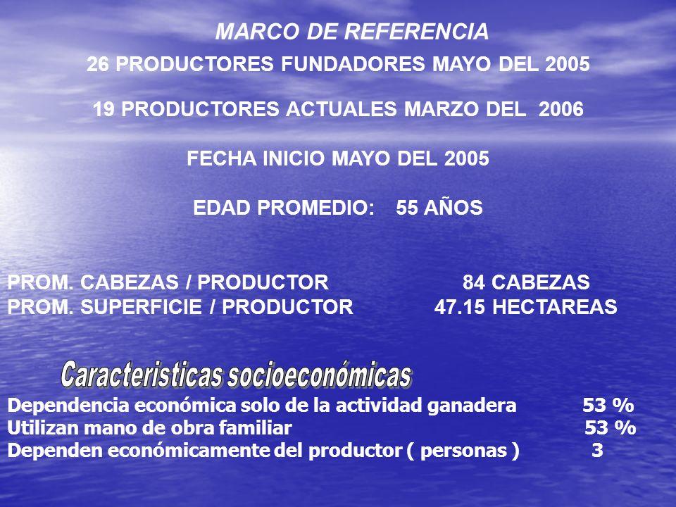 26 PRODUCTORES FUNDADORES MAYO DEL 2005 19 PRODUCTORES ACTUALES MARZO DEL 2006 FECHA INICIO MAYO DEL 2005 EDAD PROMEDIO:55 AÑOS PROM. CABEZAS / PRODUC