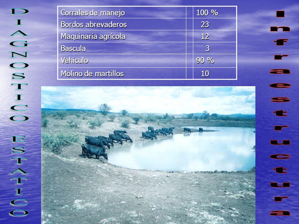 Corrales de manejo 100 % Bordos abrevaderos 23 23 Maquinaria agrícola 12 12 Bascula 3 Vehiculo 90 % Molino de martillos 10 10
