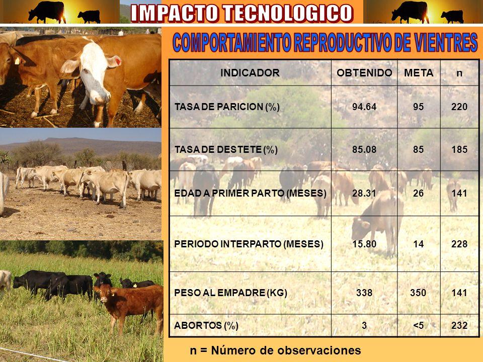 INDICADOROBTENIDOMETAn TASA DE PARICION (%)94.6495220 TASA DE DESTETE (%)85.0885185 EDAD A PRIMER PARTO (MESES)28.3126141 PERIODO INTERPARTO (MESES)15.8014228 PESO AL EMPADRE (KG)338350141 ABORTOS (%)3<5232 n = Número de observaciones