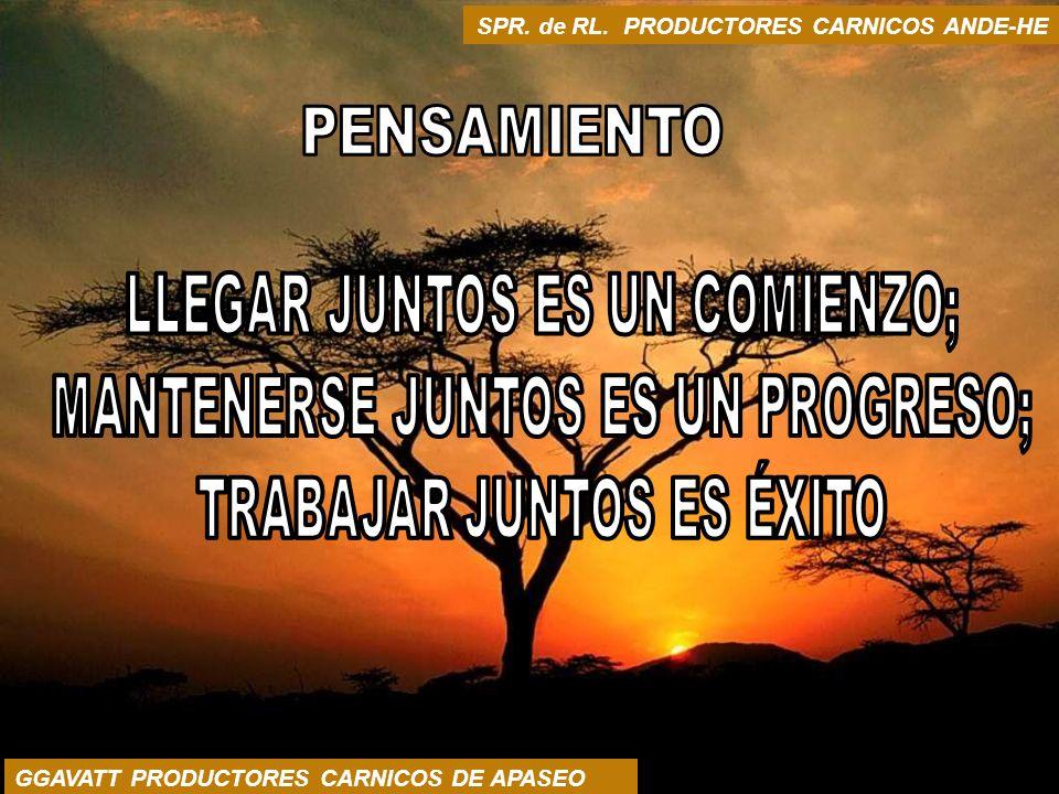 SPR. de RL. PRODUCTORES CARNICOS ANDE-HE GGAVATT PRODUCTORES CARNICOS DE APASEO