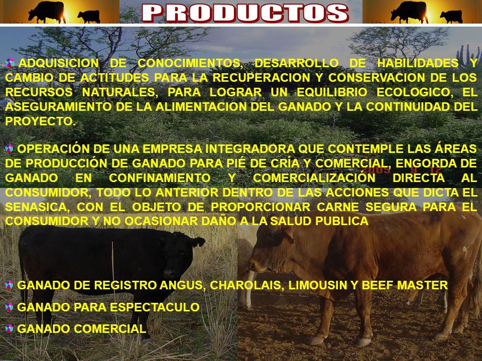 ADQUISICION DE CONOCIMIENTOS, DESARROLLO DE HABILIDADES Y CAMBIO DE ACTITUDES PARA LA RECUPERACION Y CONSERVACION DE LOS RECURSOS NATURALES, PARA LOGRAR UN EQUILIBRIO ECOLOGICO, EL ASEGURAMIENTO DE LA ALIMENTACION DEL GANADO Y LA CONTINUIDAD DEL PROYECTO.