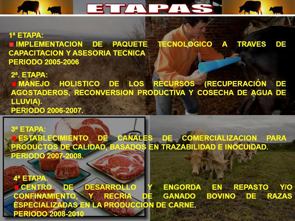 1ª ETAPA: IMPLEMENTACION DE PAQUETE TECNOLOGICO A TRAVES DE CAPACITACION Y ASESORIA TECNICA PERIODO 2005-2006 2ª.