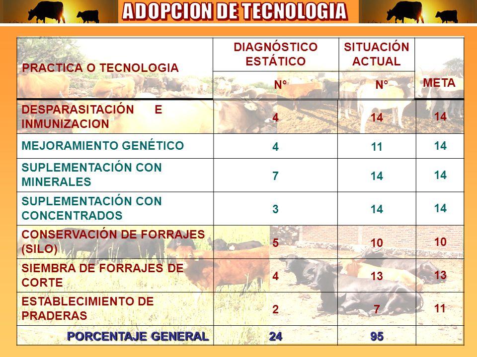 DESPARASITACIÓN E INMUNIZACION 414 MEJORAMIENTO GENÉTICO41114 SUPLEMENTACIÓN CON MINERALES 714 SUPLEMENTACIÓN CON CONCENTRADOS 314 CONSERVACIÓN DE FORRAJES (SILO) 510 SIEMBRA DE FORRAJES DE CORTE 413 ESTABLECIMIENTO DE PRADERAS 2711 PORCENTAJE GENERAL 2495 PRACTICA O TECNOLOGIA DIAGNÓSTICO ESTÁTICO SITUACIÓN ACTUAL META N°