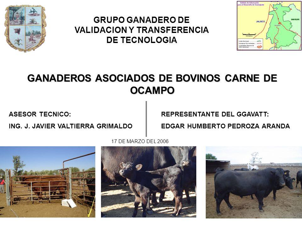 UBICACIÓN: El Municipio de Ocampo se localiza en la parte norte del estado de Guanajuato.