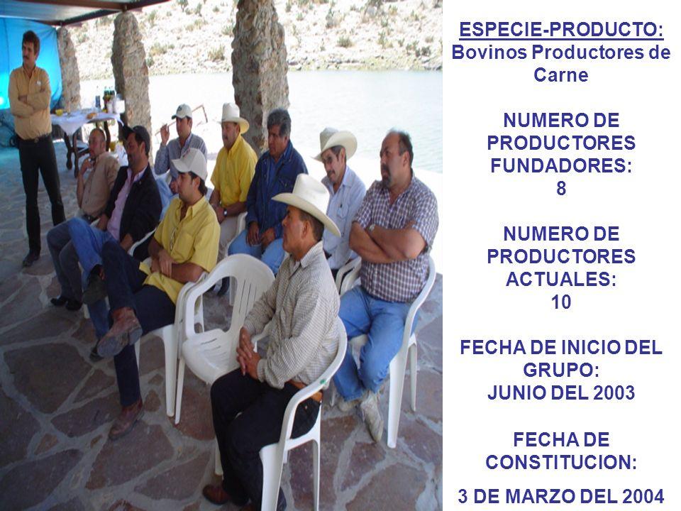 ESCOLARIDAD: Primaria 20% Secundaria 30% Preparatoria 40% Universidad 10% EDAD PROMEDIO DE LOS PRODUCTORES: 46.4 años PROMEDIO DE PERSONAS QUE DEPENDEN DE LOS PRODUCTORES: 2.8 Personas NUMERO PROMEDIO DE CABEZAS DE GANADO POR PRODUCTOR: 43.9 Cabezas/productor.
