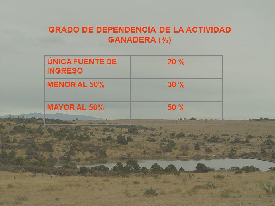 TECNOLOGIAS TRANSFERIDAS: SUPLEMENTACION CON CONCENTRADOSCREEP FEEDING DIAGNOSTICO DE GESTACION OTRAS ACTIVIDADES: PLATICAS TECNICAS HERRADO DEL GANADOIMPLEMENTACION DE INFRAESTRUCTURA CON RECURSOS PROPIOS LOTIFICACION DE GANADO PESAJE DE BECERROS