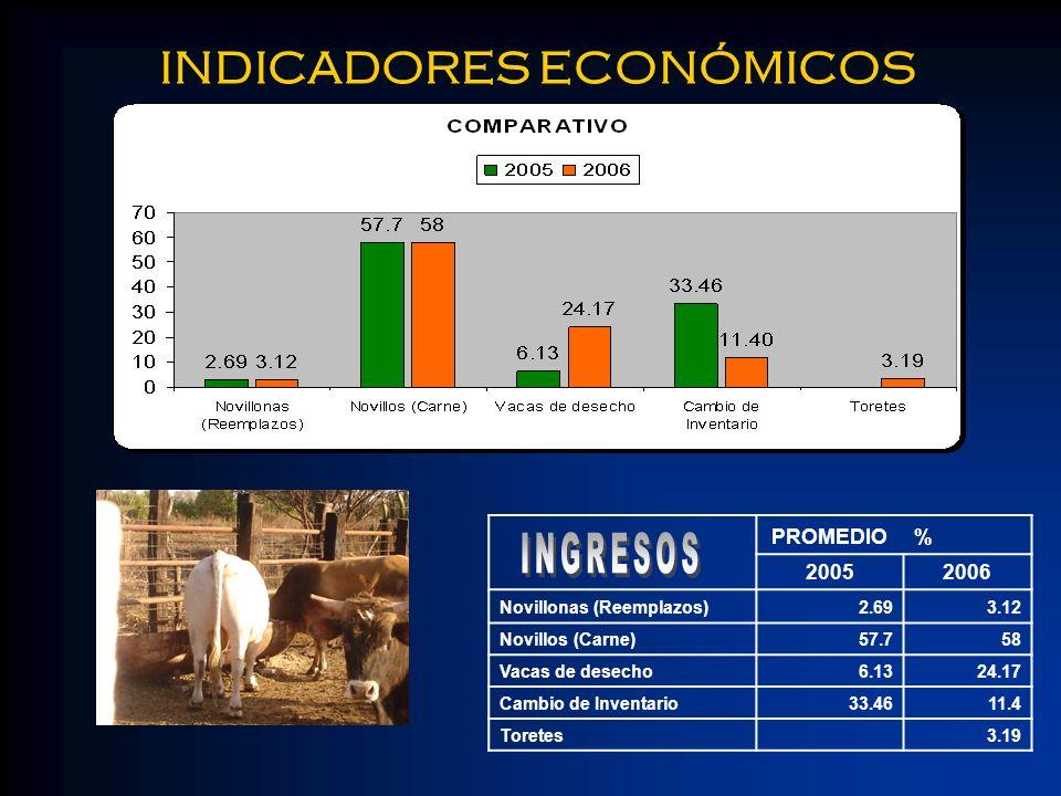 INDICADORES ECONÓMICOS PROMEDIO% 20052006 Novillonas (Reemplazos)2.693.12 Novillos (Carne)57.758 Vacas de desecho6.1324.17 Cambio de Inventario33.4611