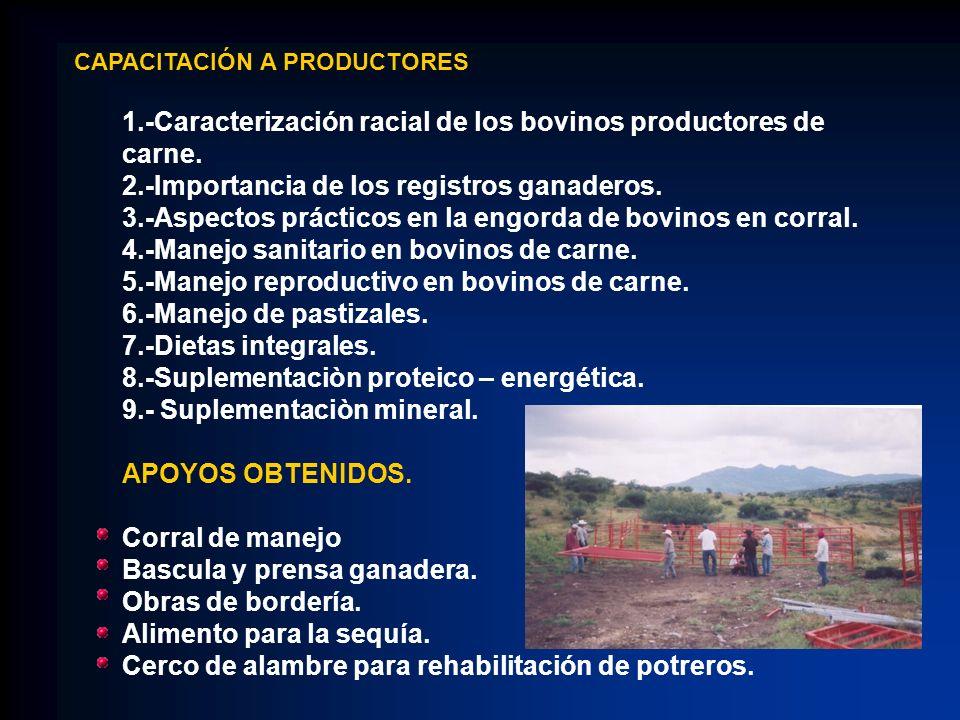 CAPACITACIÓN A PRODUCTORES 1.-Caracterización racial de los bovinos productores de carne. 2.-Importancia de los registros ganaderos. 3.-Aspectos práct