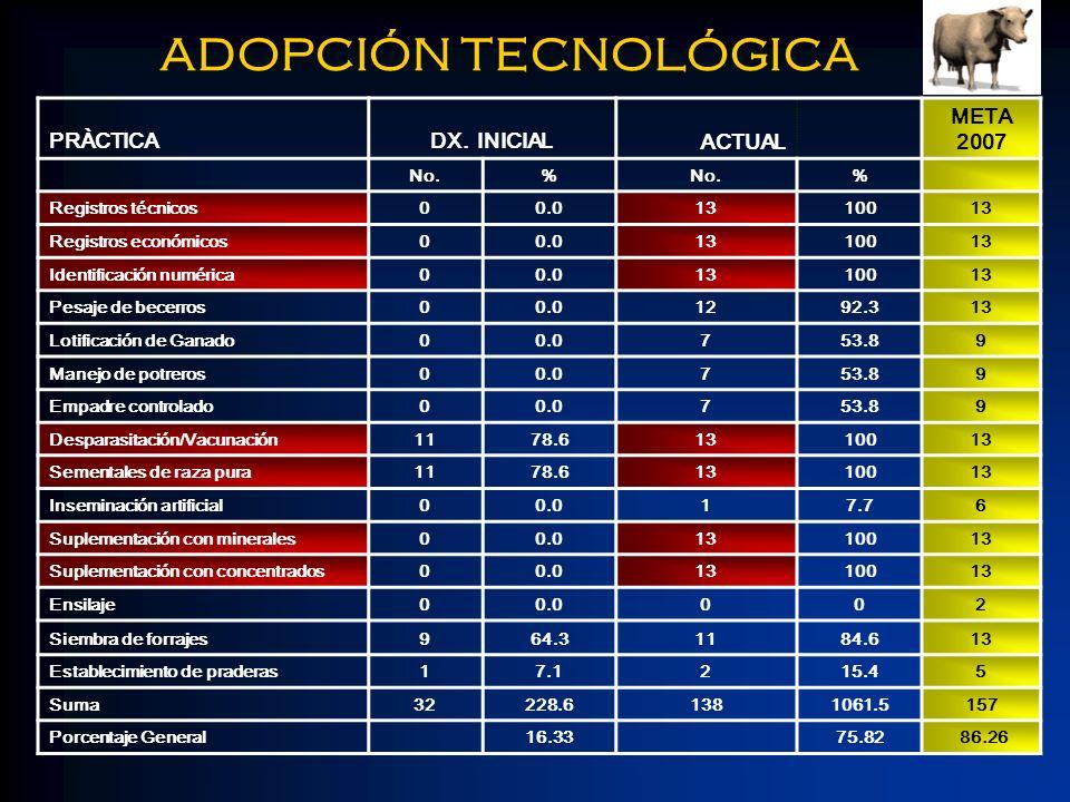 ADOPCIÓN TECNOLÓGICA PRÀCTICADX. INICIAL ACTUAL META 2007 No.% % Registros técnicos00.01310013 Registros económicos00.01310013 Identificación numérica