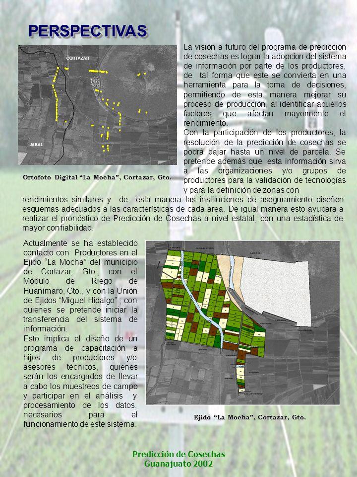 CORTAZAR JARAL La visión a futuro del programa de predicción de cosechas es lograr la adopcion del sistema de información por parte de los productores