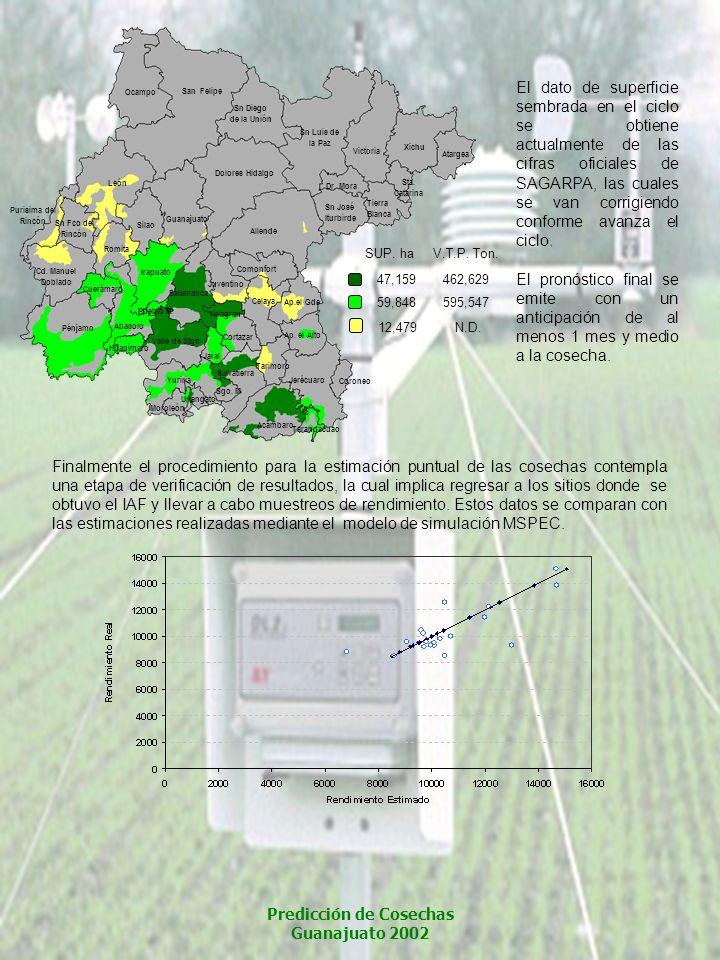 Finalmente el procedimiento para la estimación puntual de las cosechas contempla una etapa de verificación de resultados, la cual implica regresar a l