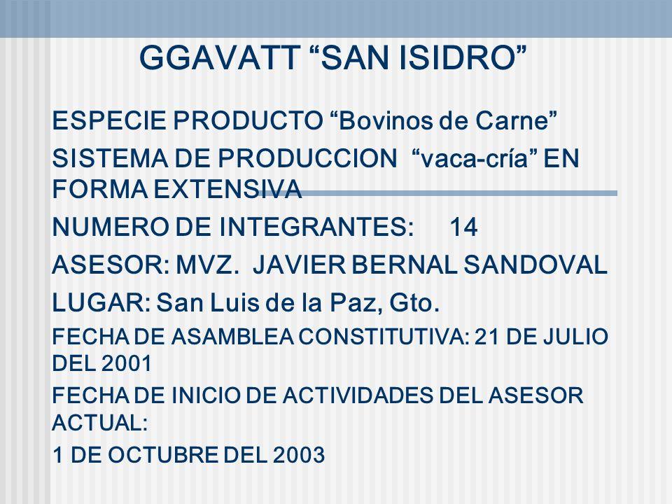 GGAVATT SAN ISIDRO ESPECIE PRODUCTO Bovinos de Carne SISTEMA DE PRODUCCION vaca-cría EN FORMA EXTENSIVA NUMERO DE INTEGRANTES: 14 ASESOR: MVZ. JAVIER
