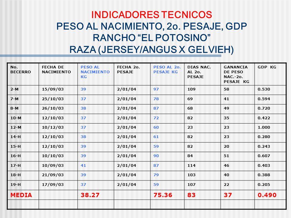 INDICADORES TECNICOS PESO AL NACIMIENTO, 2o. PESAJE, GDP RANCHO EL POTOSINO RAZA (JERSEY/ANGUS X GELVIEH) No. BECERRO FECHA DE NACIMIENTO PESO AL NACI
