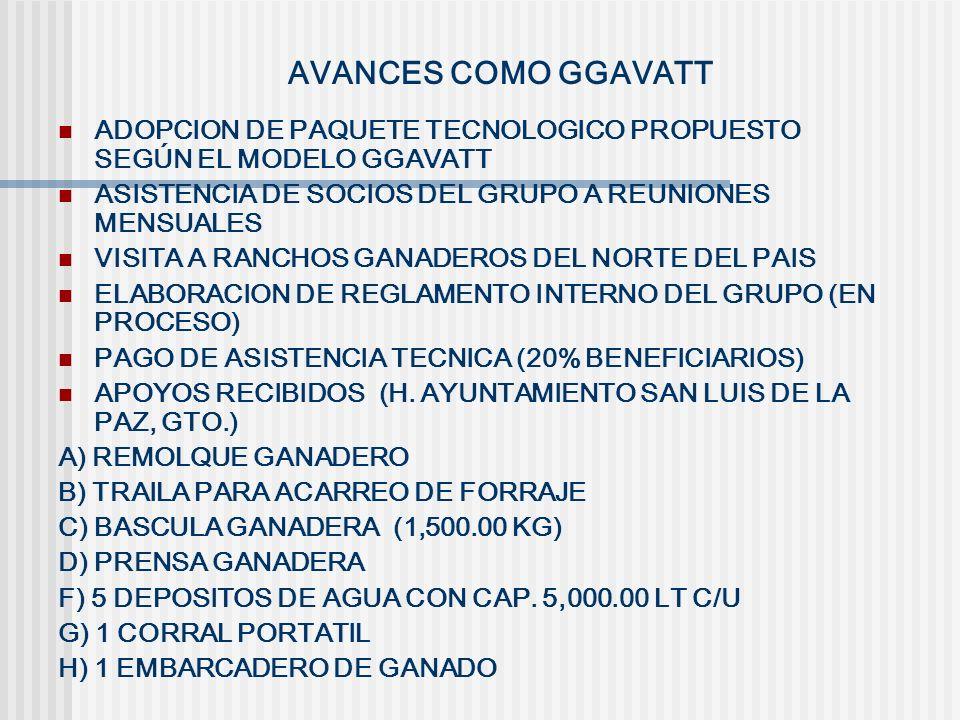 AVANCES COMO GGAVATT ADOPCION DE PAQUETE TECNOLOGICO PROPUESTO SEGÚN EL MODELO GGAVATT ASISTENCIA DE SOCIOS DEL GRUPO A REUNIONES MENSUALES VISITA A R