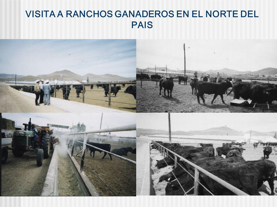VISITA A RANCHOS GANADEROS EN EL NORTE DEL PAIS