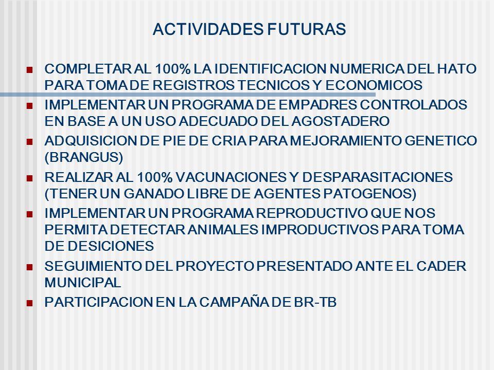 ACTIVIDADES FUTURAS COMPLETAR AL 100% LA IDENTIFICACION NUMERICA DEL HATO PARA TOMA DE REGISTROS TECNICOS Y ECONOMICOS IMPLEMENTAR UN PROGRAMA DE EMPA