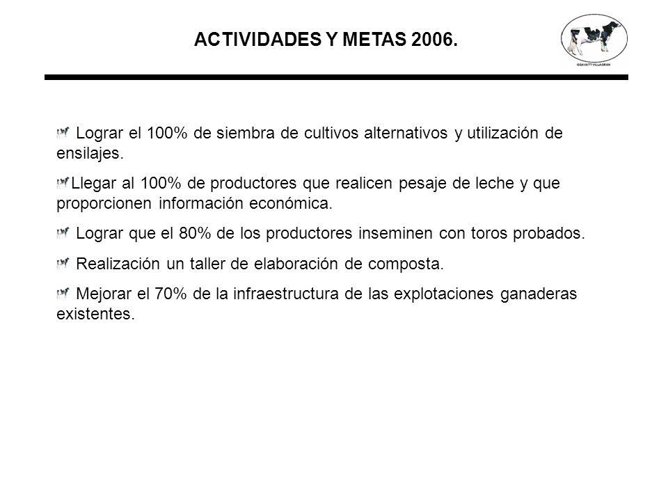 ACTIVIDADES Y METAS 2006.