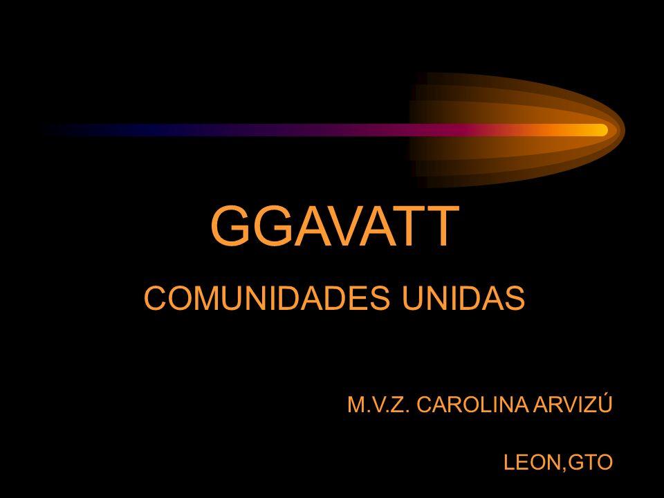GGAVATT COMUNIDADES UNIDAS M.V.Z. CAROLINA ARVIZÚ LEON,GTO