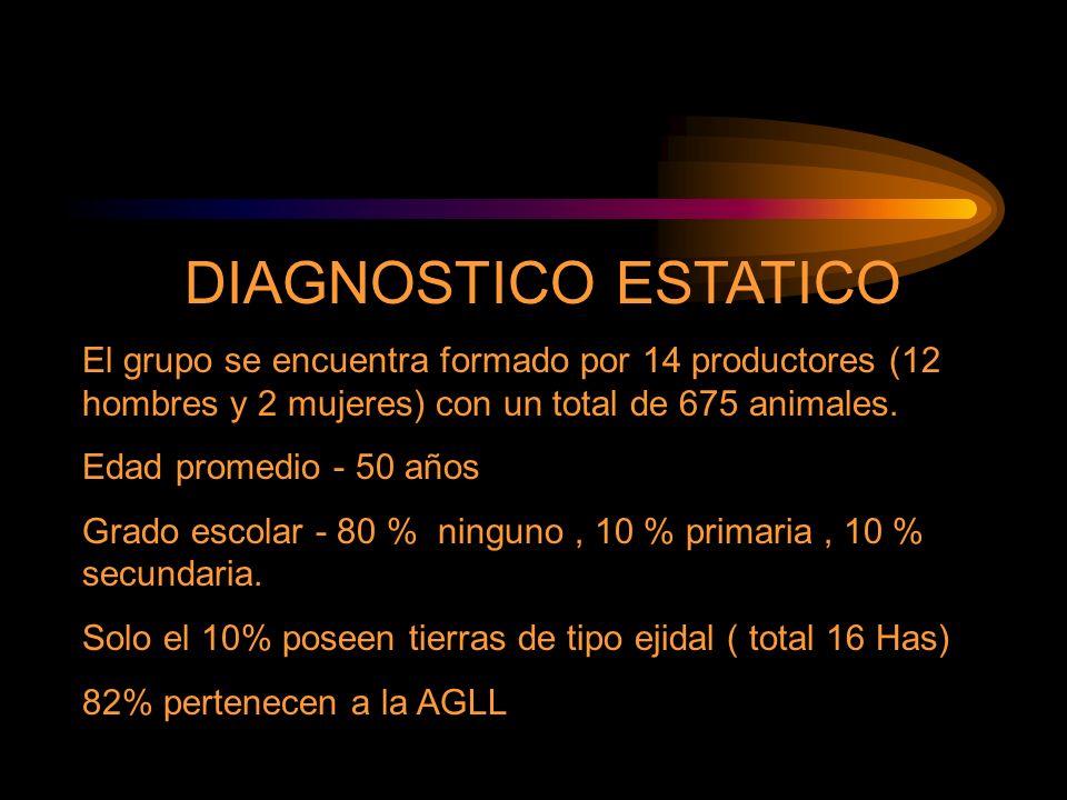 DIAGNOSTICO ESTATICO El grupo se encuentra formado por 14 productores (12 hombres y 2 mujeres) con un total de 675 animales. Edad promedio - 50 años G