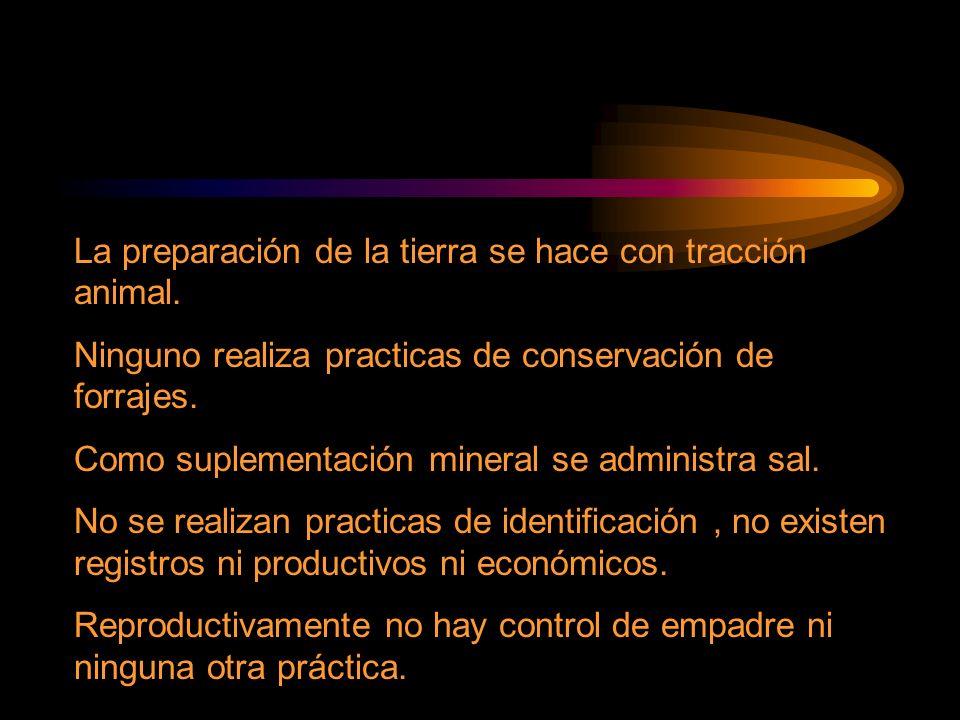La preparación de la tierra se hace con tracción animal. Ninguno realiza practicas de conservación de forrajes. Como suplementación mineral se adminis