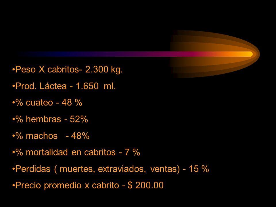 Peso X cabritos- 2.300 kg. Prod. Láctea - 1.650 ml. % cuateo - 48 % % hembras - 52% % machos - 48% % mortalidad en cabritos - 7 % Perdidas ( muertes,