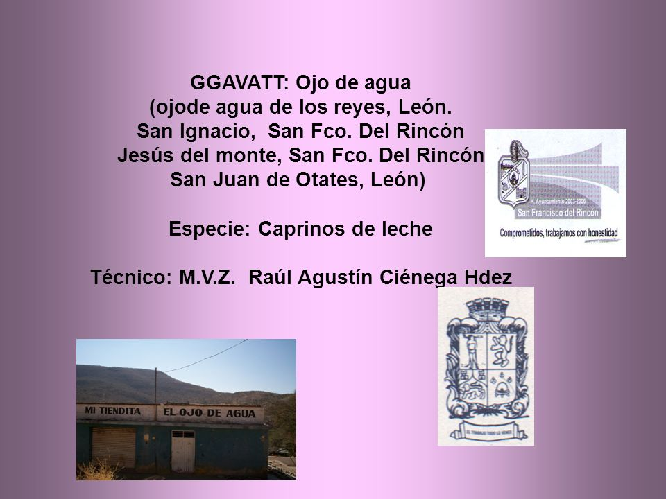 GGAVATT: Ojo de agua (ojode agua de los reyes, León.