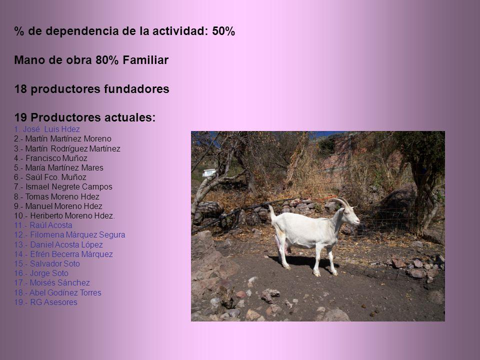 % de dependencia de la actividad: 50% Mano de obra 80% Familiar 18 productores fundadores 19 Productores actuales: 1.