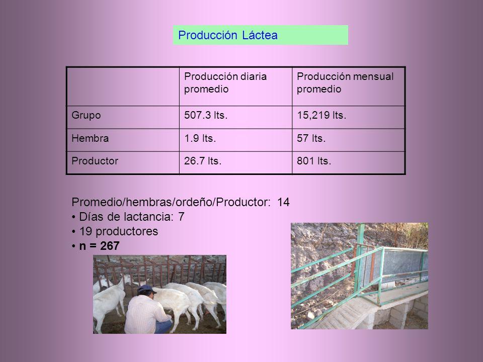 Producción diaria promedio Producción mensual promedio Grupo507.3 lts.15,219 lts.