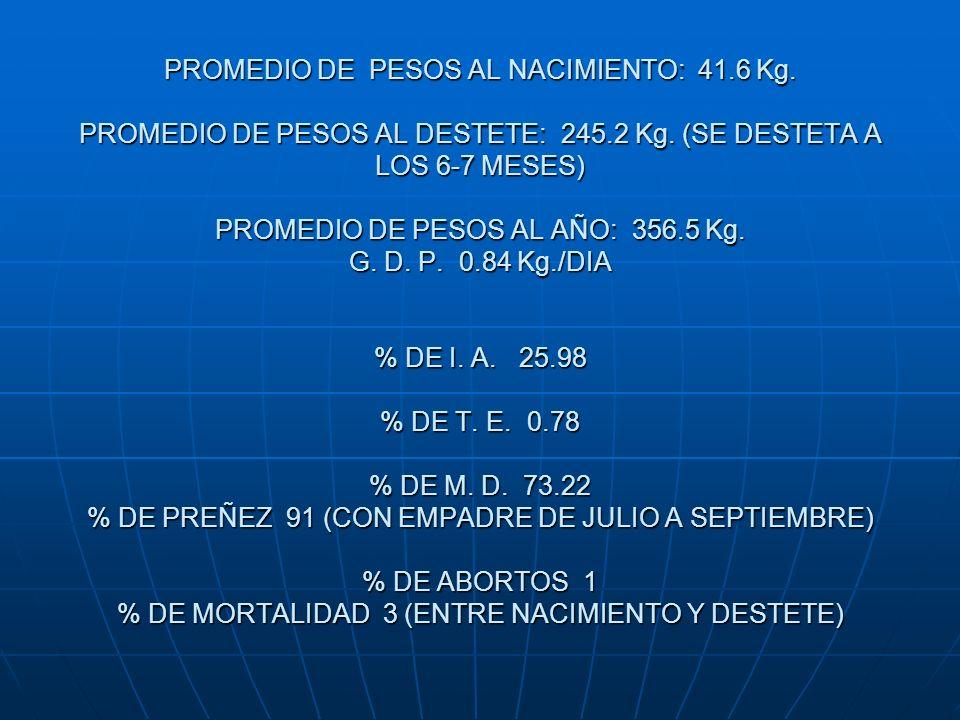 PROMEDIO DE PESOS AL NACIMIENTO: 41.6 Kg. PROMEDIO DE PESOS AL DESTETE: 245.2 Kg. (SE DESTETA A LOS 6-7 MESES) PROMEDIO DE PESOS AL AÑO: 356.5 Kg. G.