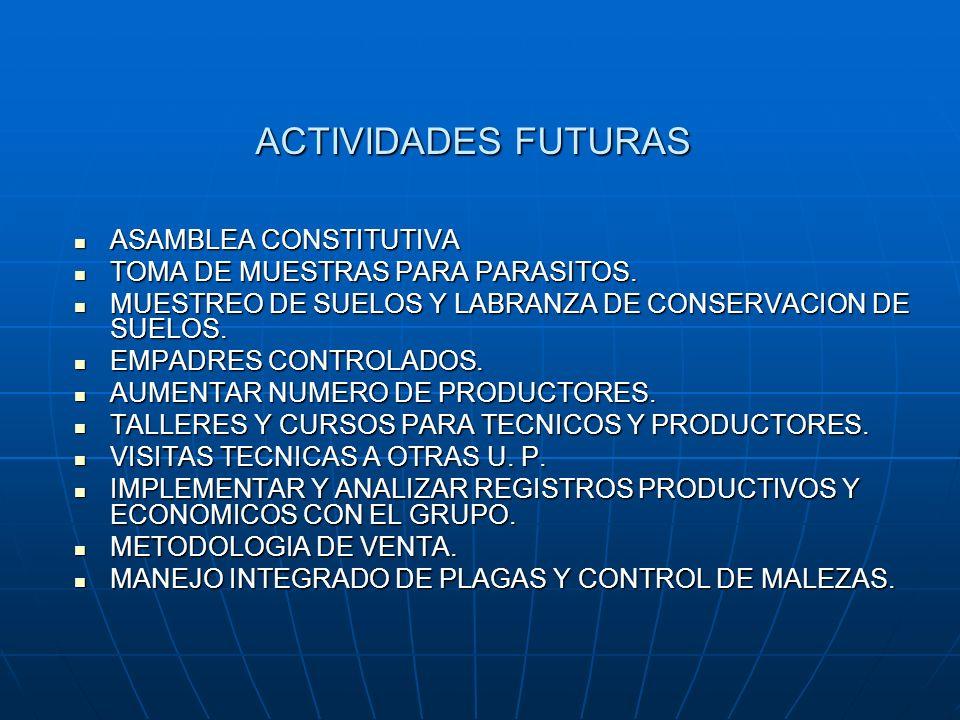 ACTIVIDADES FUTURAS ASAMBLEA CONSTITUTIVA ASAMBLEA CONSTITUTIVA TOMA DE MUESTRAS PARA PARASITOS. TOMA DE MUESTRAS PARA PARASITOS. MUESTREO DE SUELOS Y